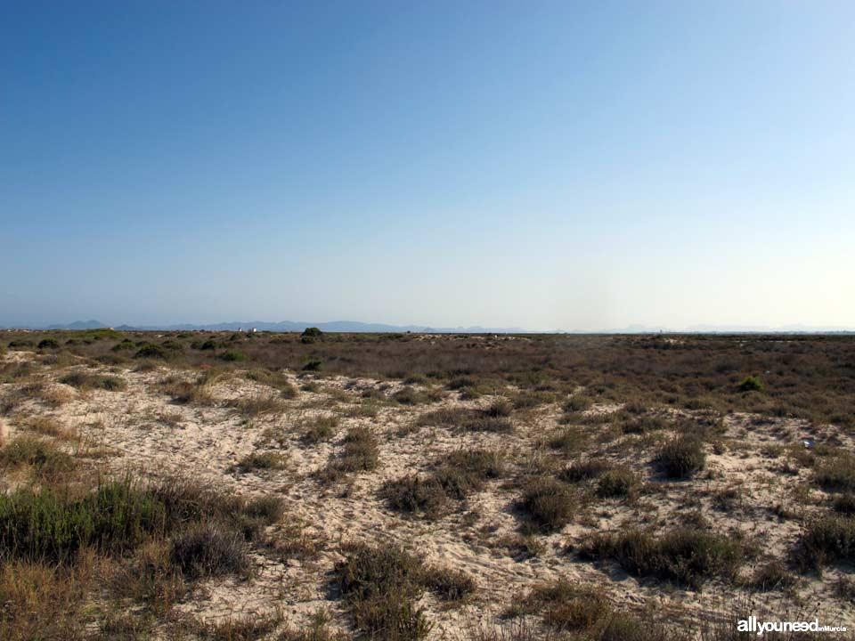 Playa de Las Salinas en San Pedro del Pinatar