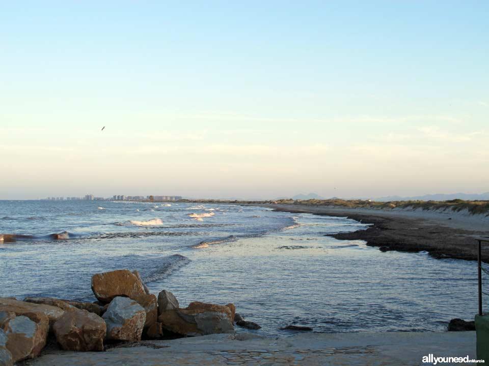 Playa de las Salinas. Playas de San Pedro del Pinatar