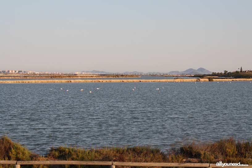 Sendero de Las Encañizadas. Las Salinas