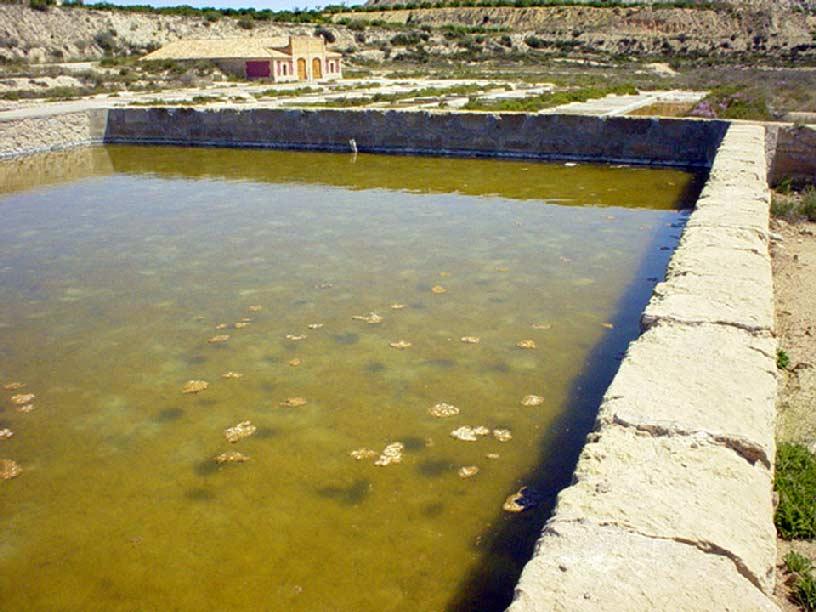 Humedal del Ajauque y Rambla Salada