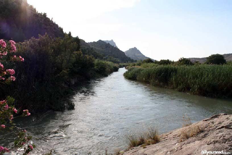 Valle de Ricote. Ruta de las Norias en Abarán