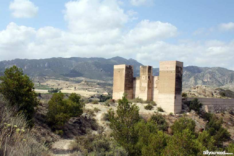 Valle de Ricote. Castillo de Blanca