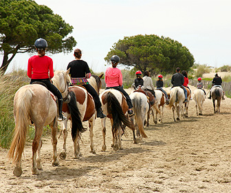 Active Tourism and Adventure in Murcia. Horse riding
