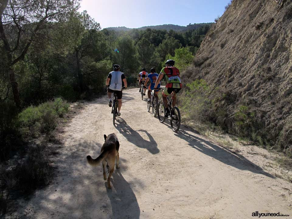 Turismo Activo y de Aventura en Murcia. Bicicleta de montaña