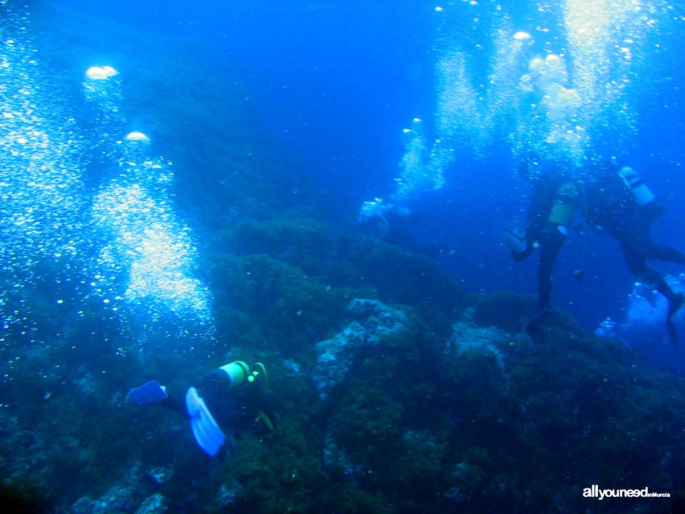 Active Tourism and Adventure in Murcia. Diving at Cabo de Palos