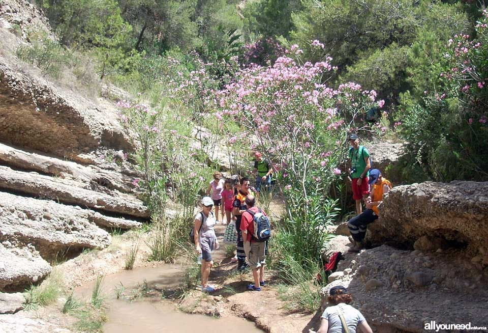 Active Tourism and Adventure in Murcia. Trekking along the Chícamo river in Abanilla