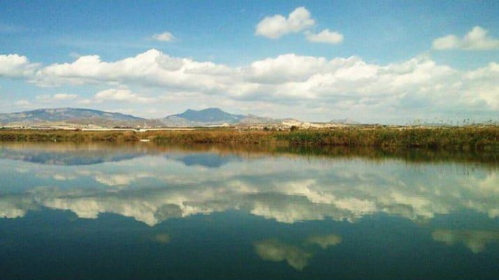 Ruta ecológica y taller en Campotéjar