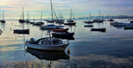 Paseo en Barco por el Mar Menor en Inglés