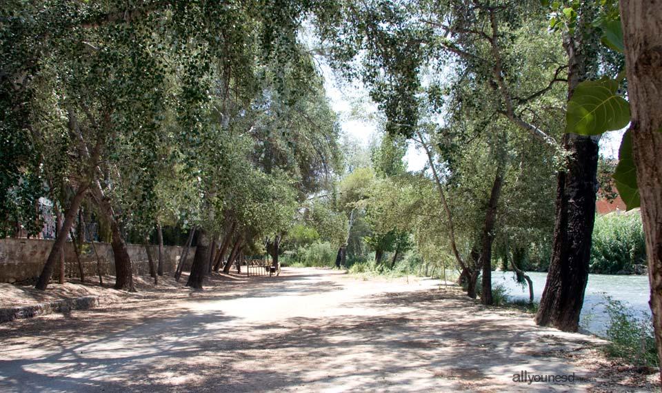 Paseo del Parque de Abarán