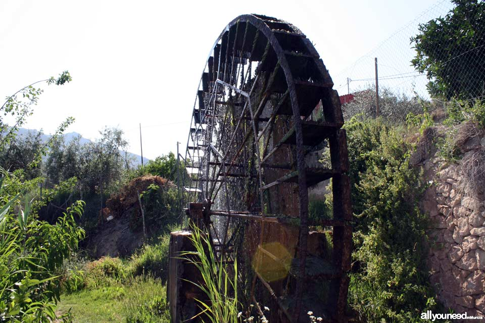 Candelón Waterwheel in Abarán. Spain