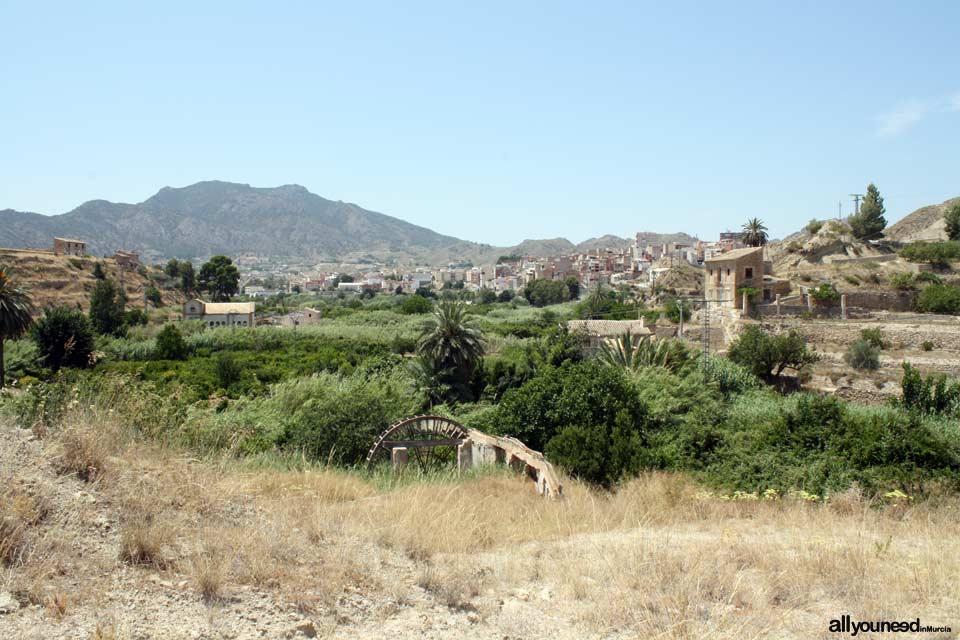 Noria de Félix Cayetano en Abarán