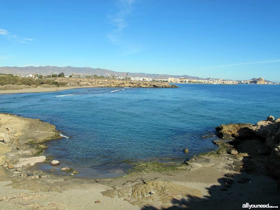 Herradura Cove