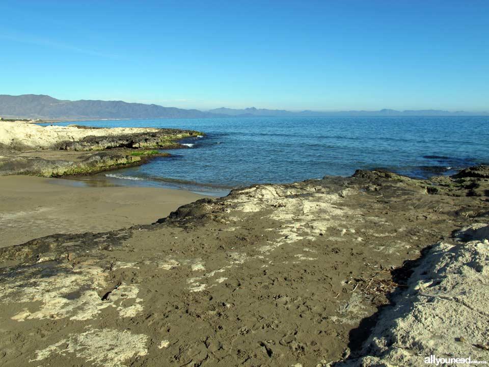 Playa Torre de Cope