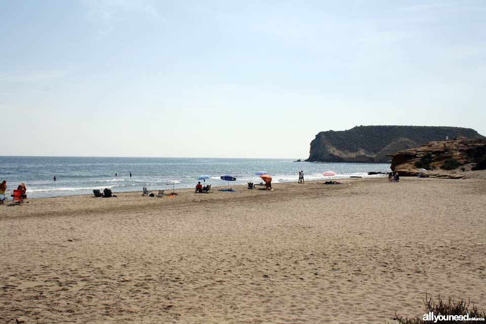 Playa de la Higuerica