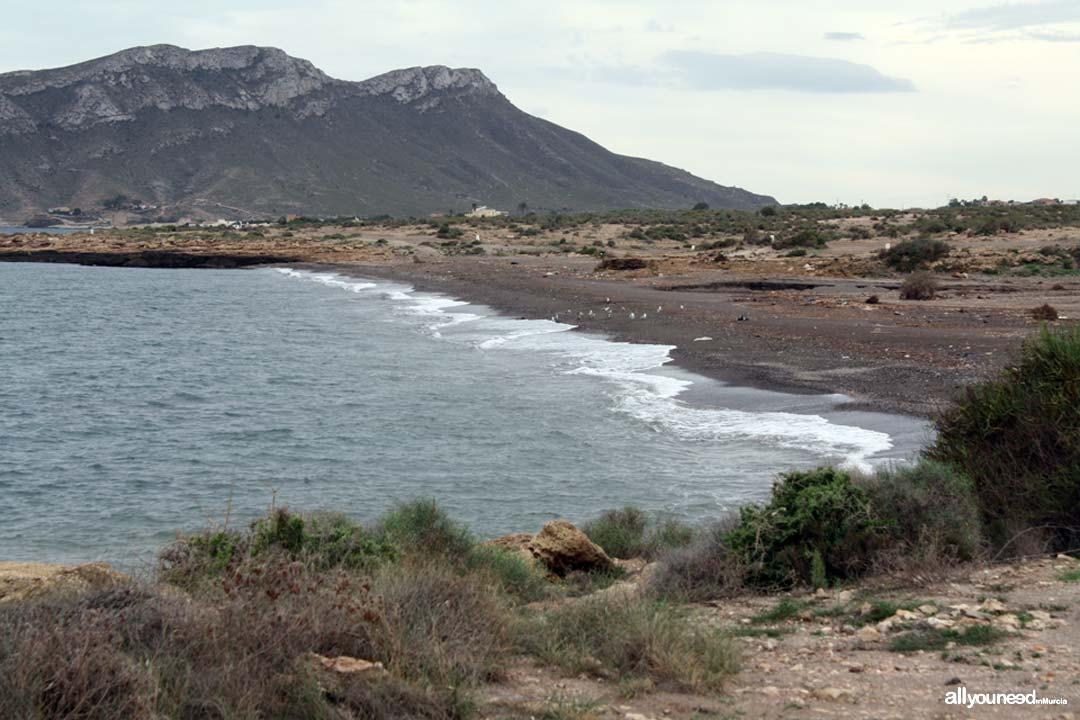Playa de la Rambla Elena