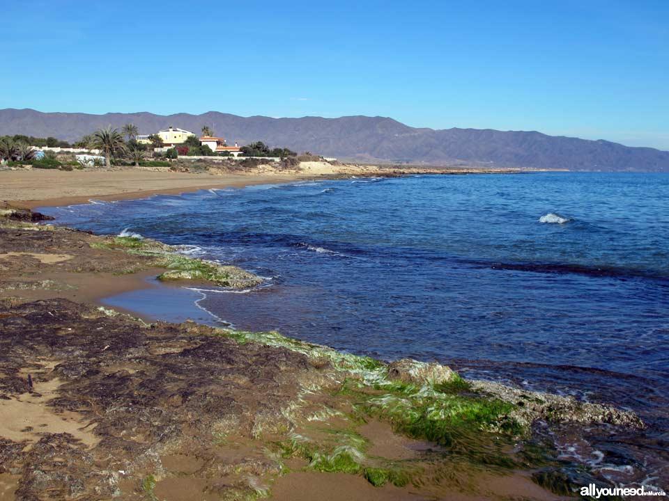 Hoyo Beach