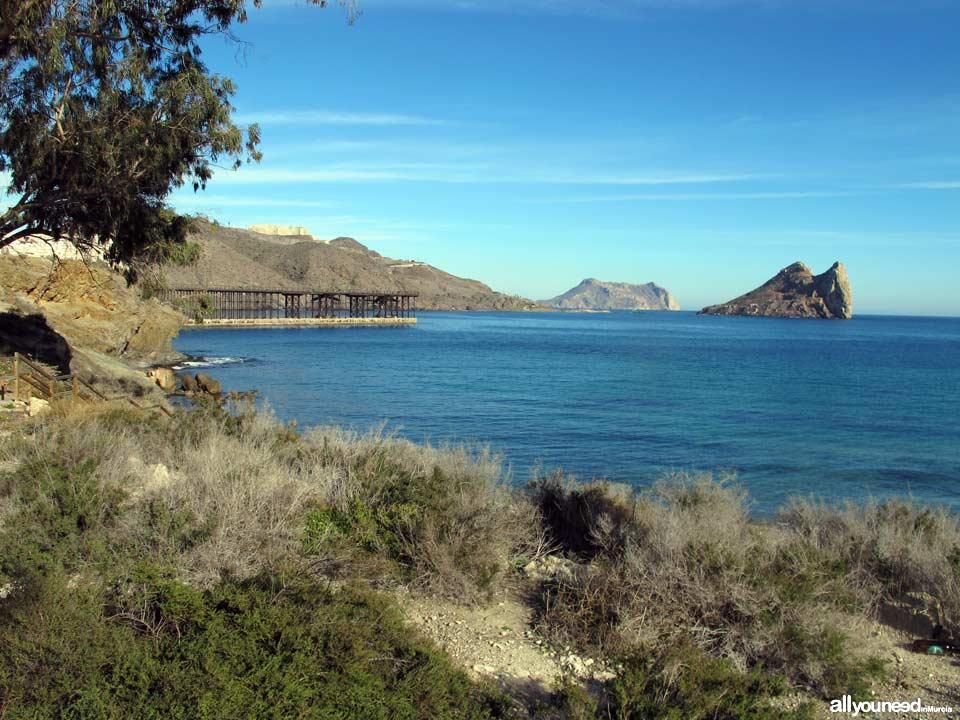 Cocedores del Hornillo Beach. Aguilas