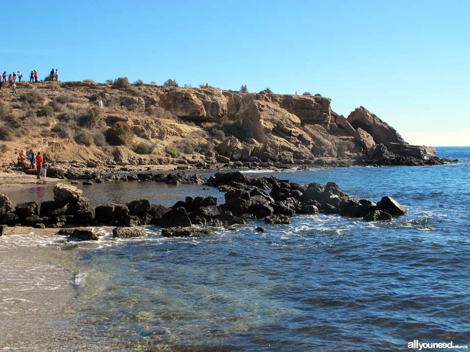 Tortugas Beach - Los Cocederos Beach