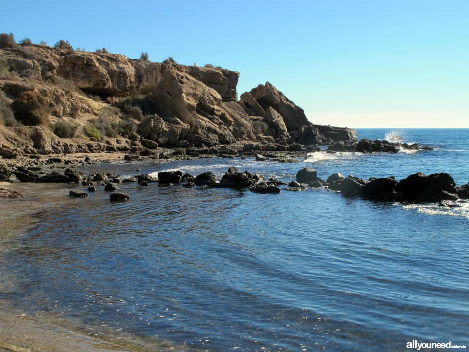 Playa de las Tortugas - Los Cocederos
