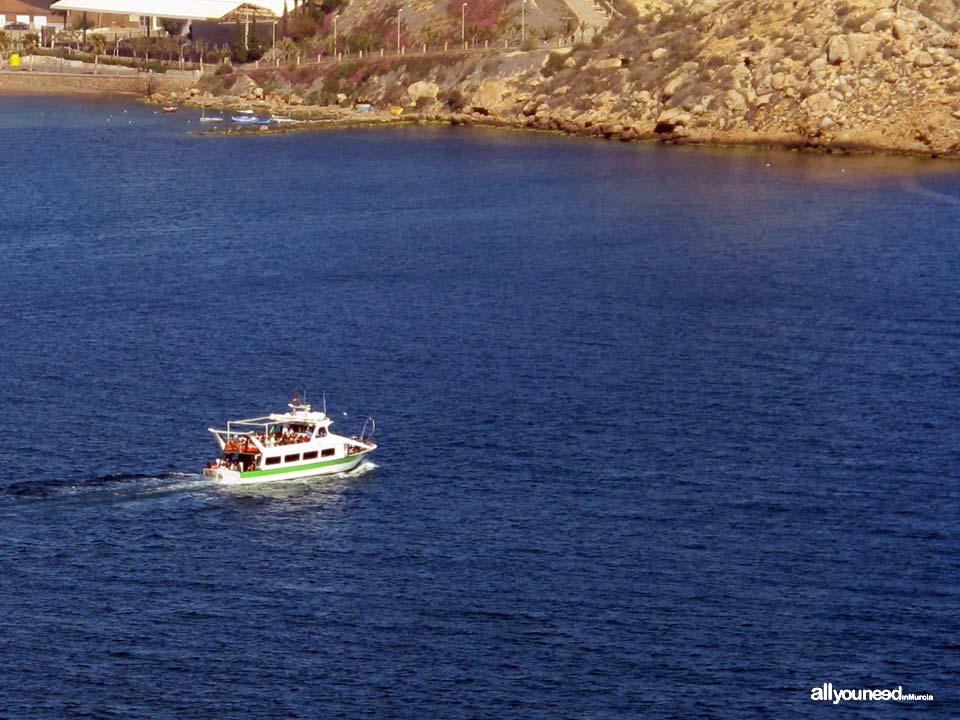 Barco Don Pancho en Águilas. Paseos en barco