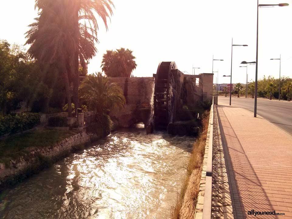 Noria o Rueda de Alcantarilla