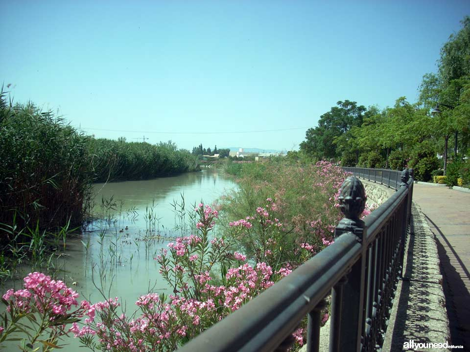 Río Segura al paso por Archena