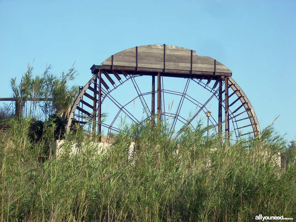 Acebuche Waterwheel in Murcia. Spain