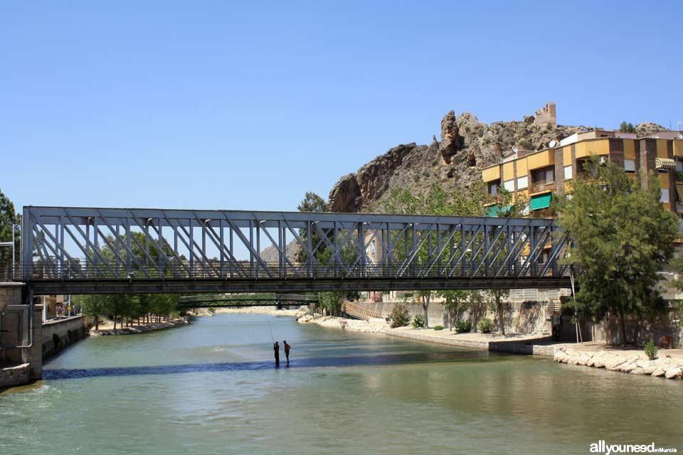Puente de Hierro de Blanca