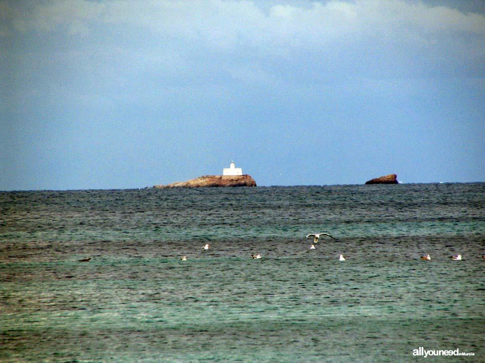 Isla Hormiga de Cabo de Palos