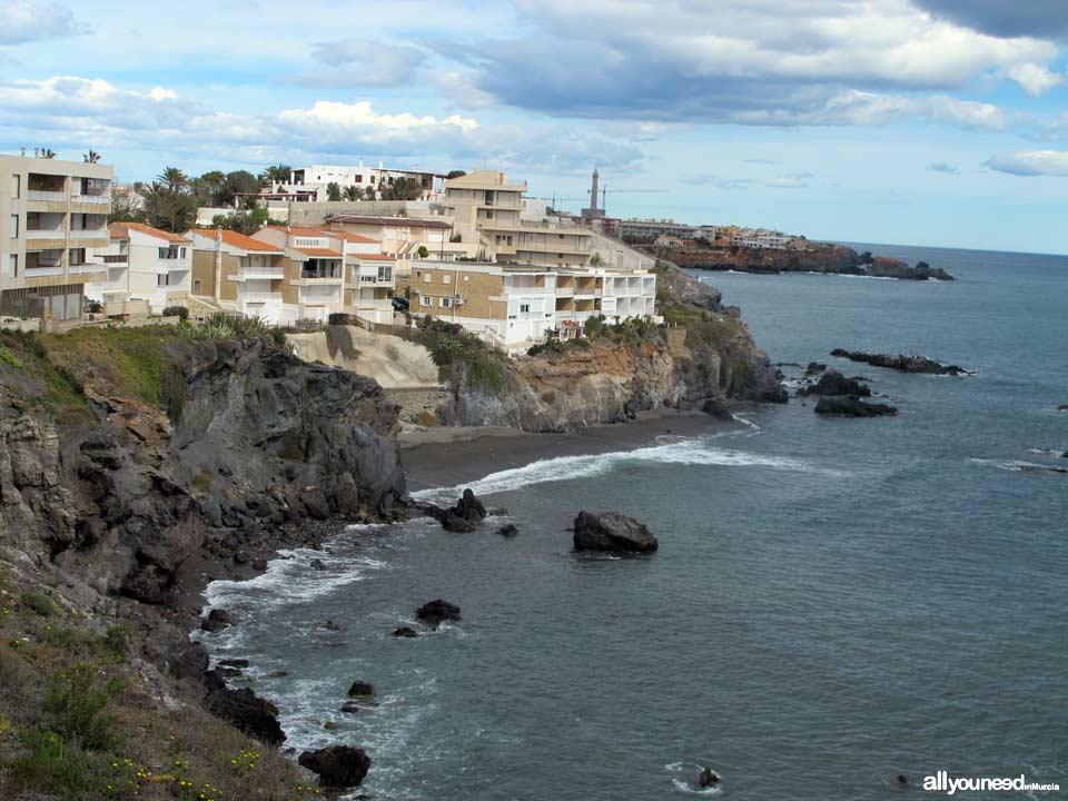 Flores Cove