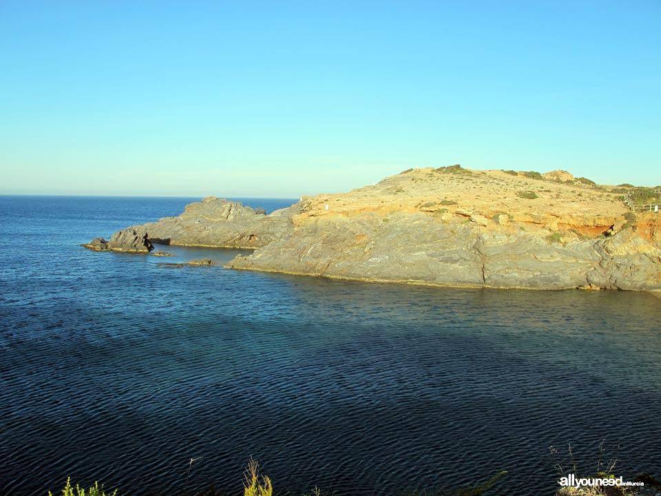 Fría Cove