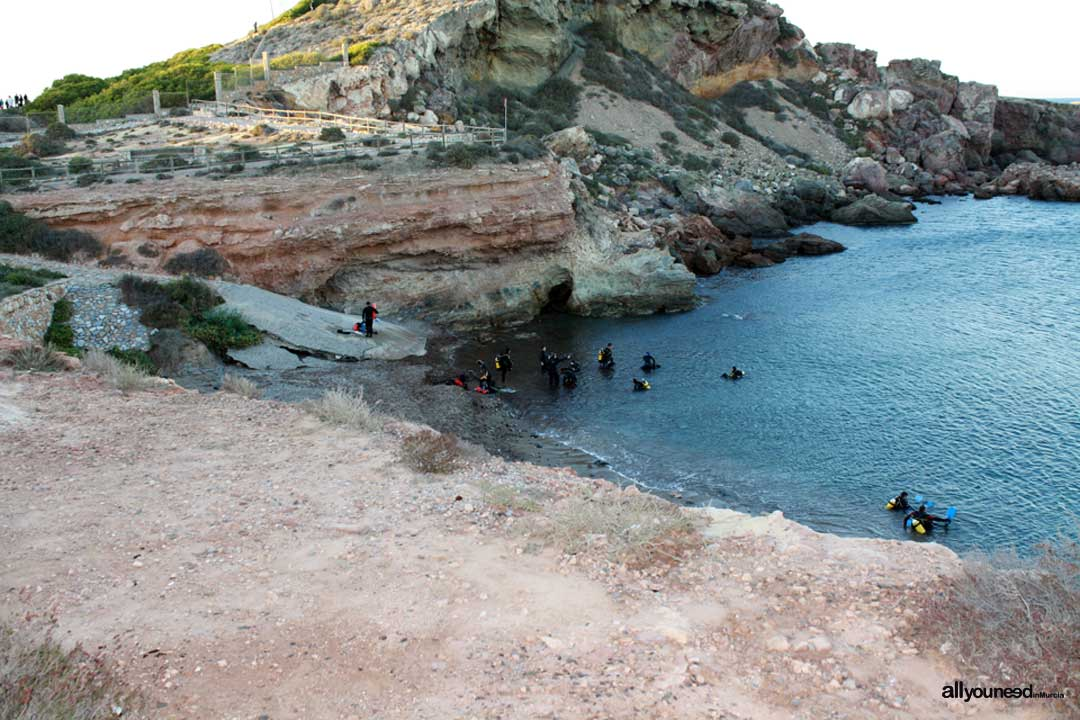Scuba Diving in Cala Fría. Cabo de Palos