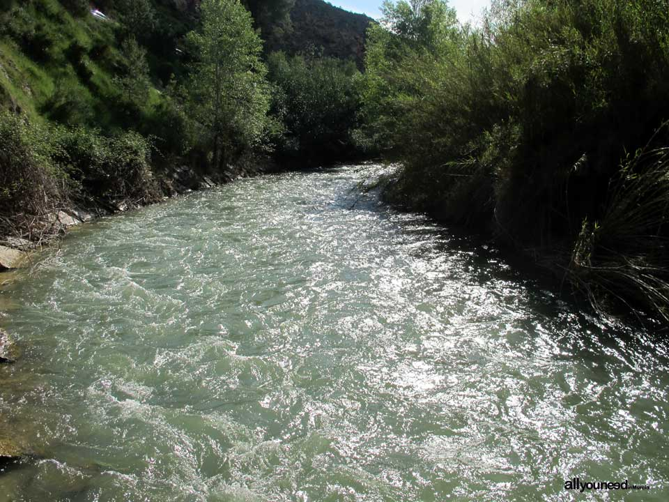 Río Segura al paso por Calasparra