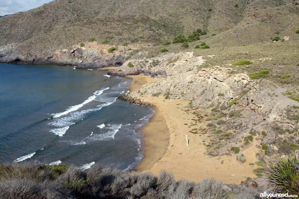 Calblanque. Playa Parreño