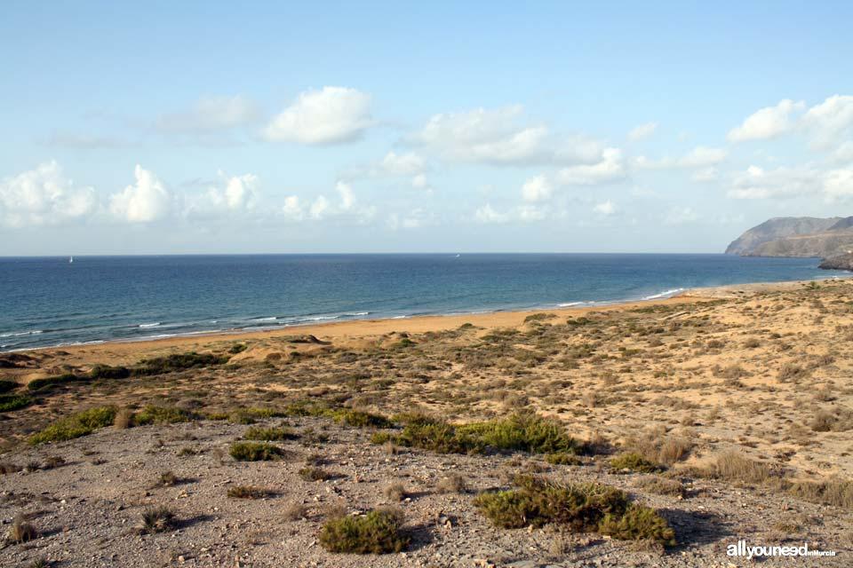Calblanque. Playa Larga