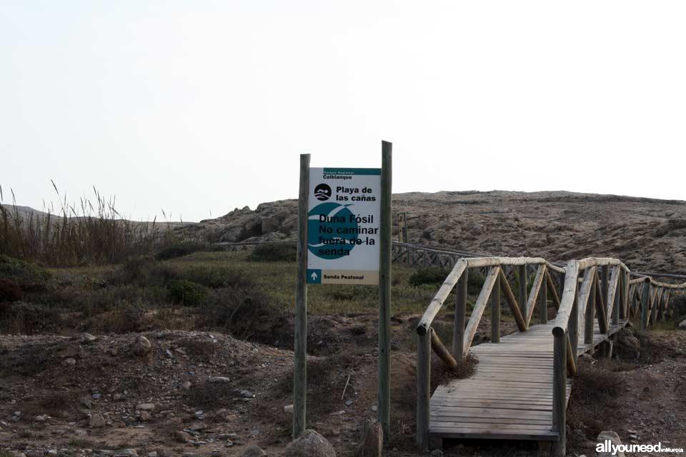 Sendero de Cala Reona a las molinetas de Calblanque