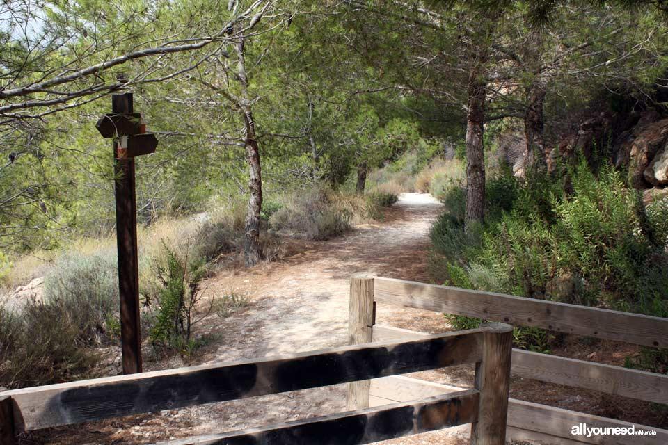 Roman Pathway