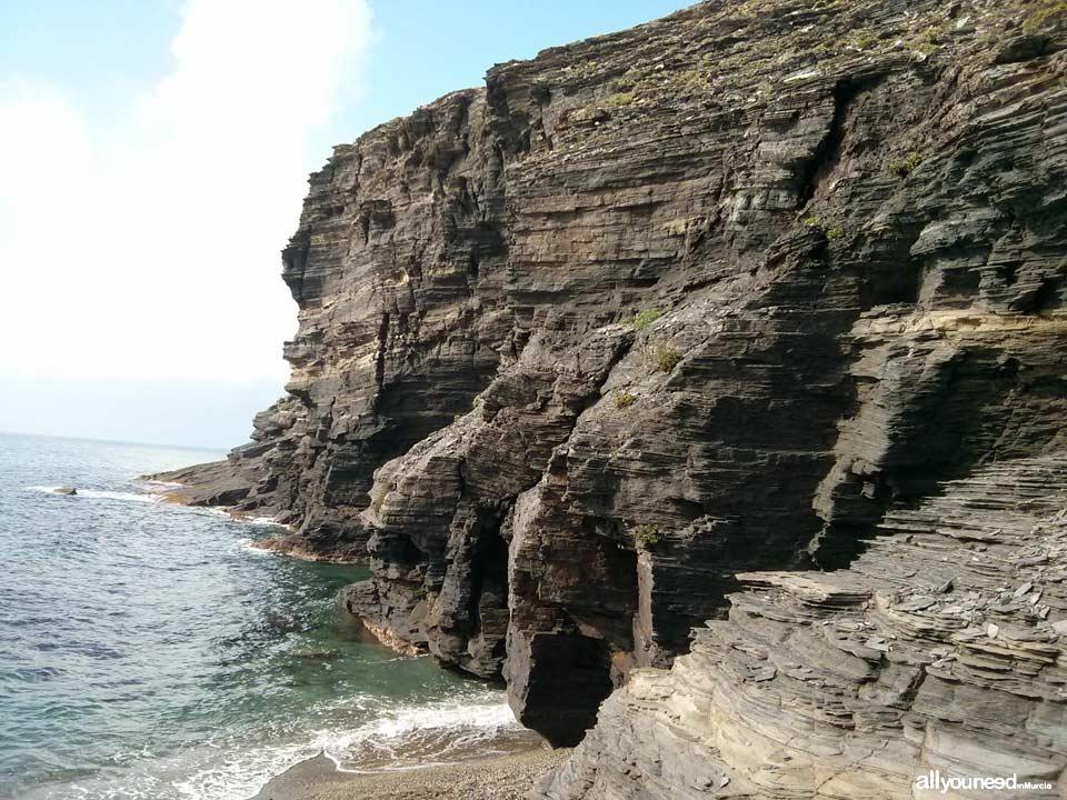 Cocón Cove