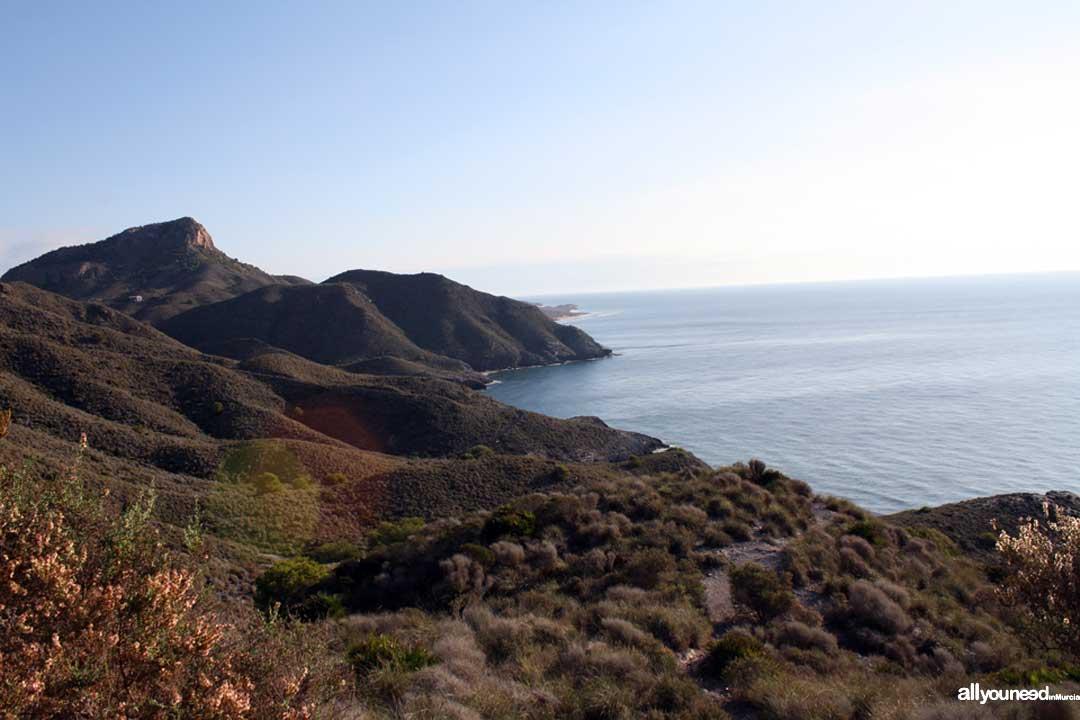 Cala del Barco. Playas de Calblanque. Murcia. Panorámicas