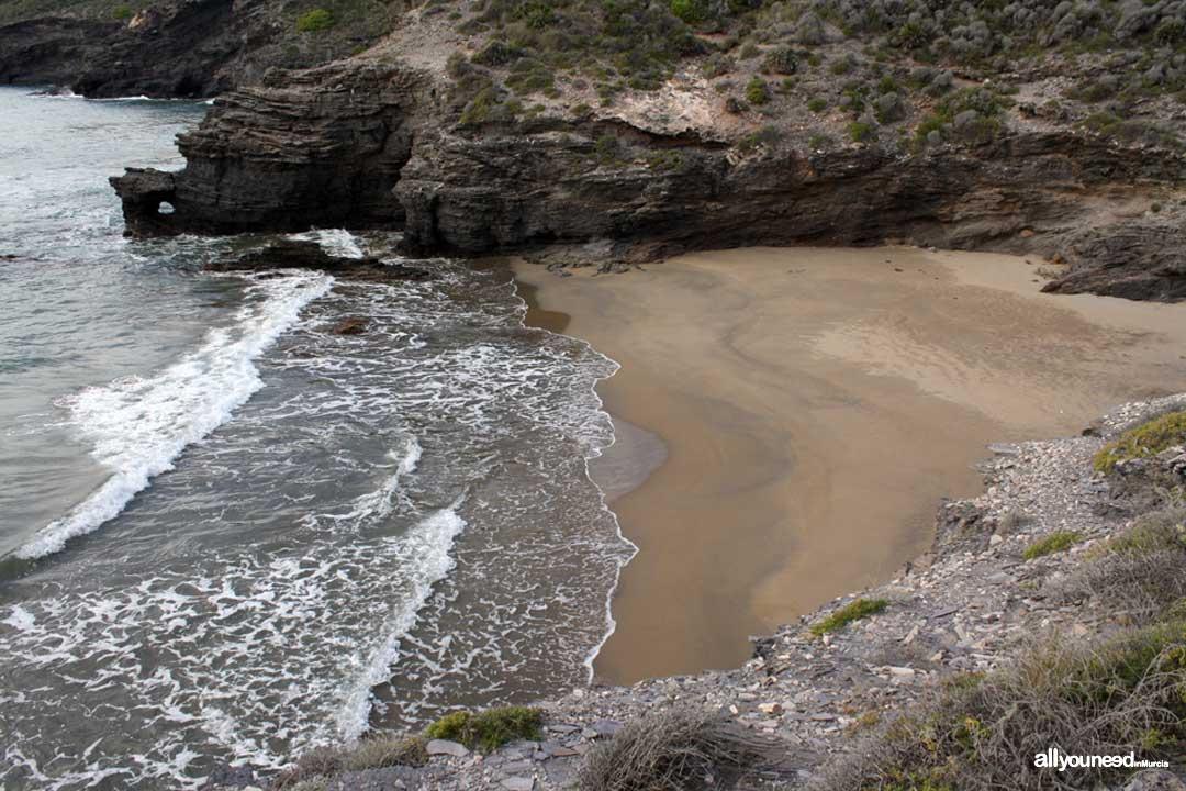 Cuervo Cove