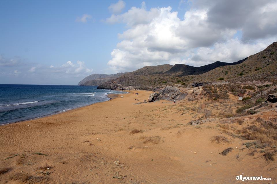 Playa Negrete
