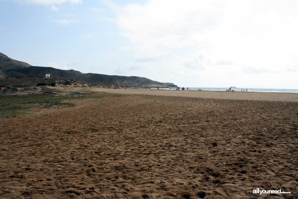 Playa de Calblanque Playas de Calblanque. Cartagena