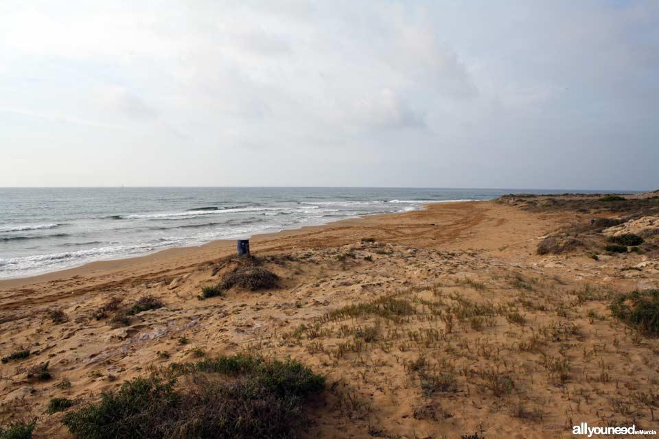 Playa de las Cañas. Playas de Calblanque. Murcia