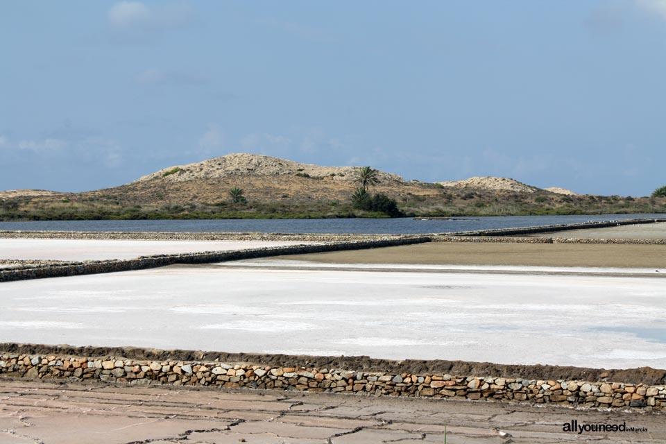 Rasall Saltflats