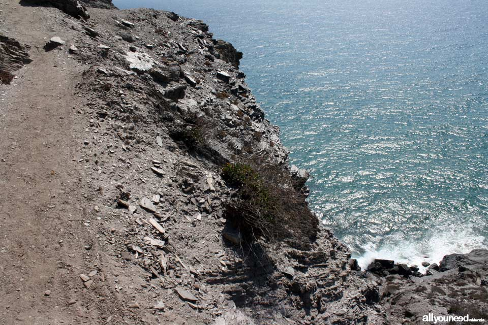 7- Trail and cliff