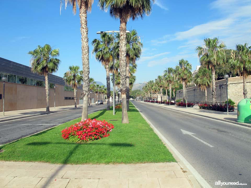 Calles de Cartagena. Paseo de Alfonso XII