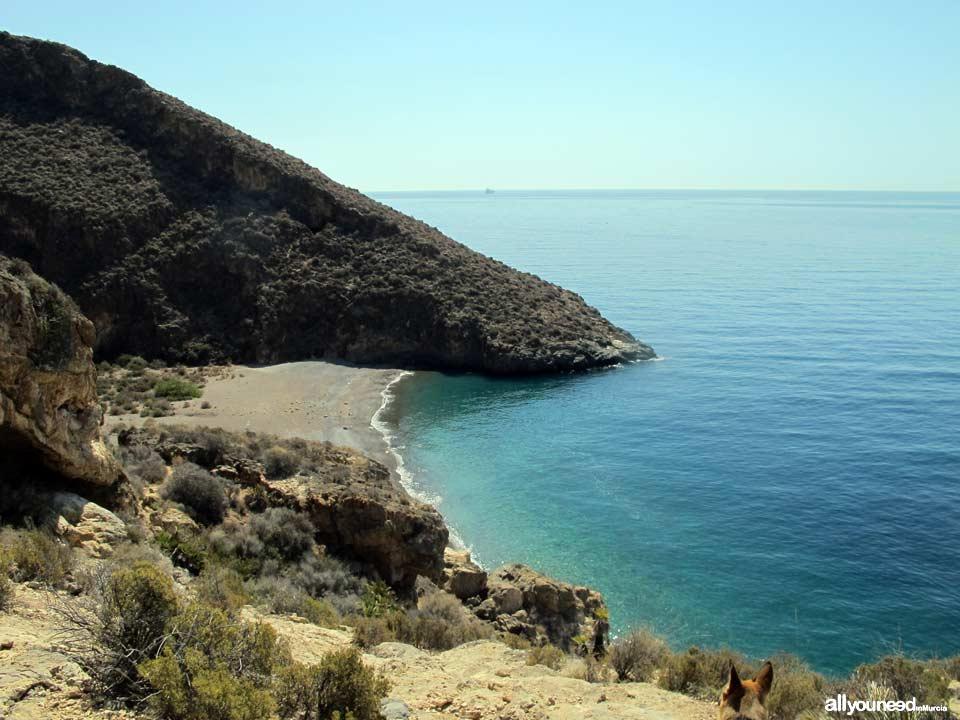 Cala Aguilar en Cabo Tiñoso, -Cartagena- España