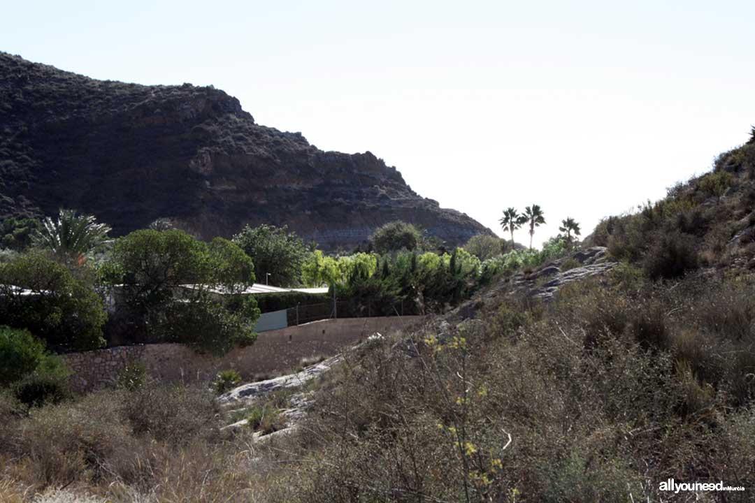 Cala Morena. Camping Naturista el Portús