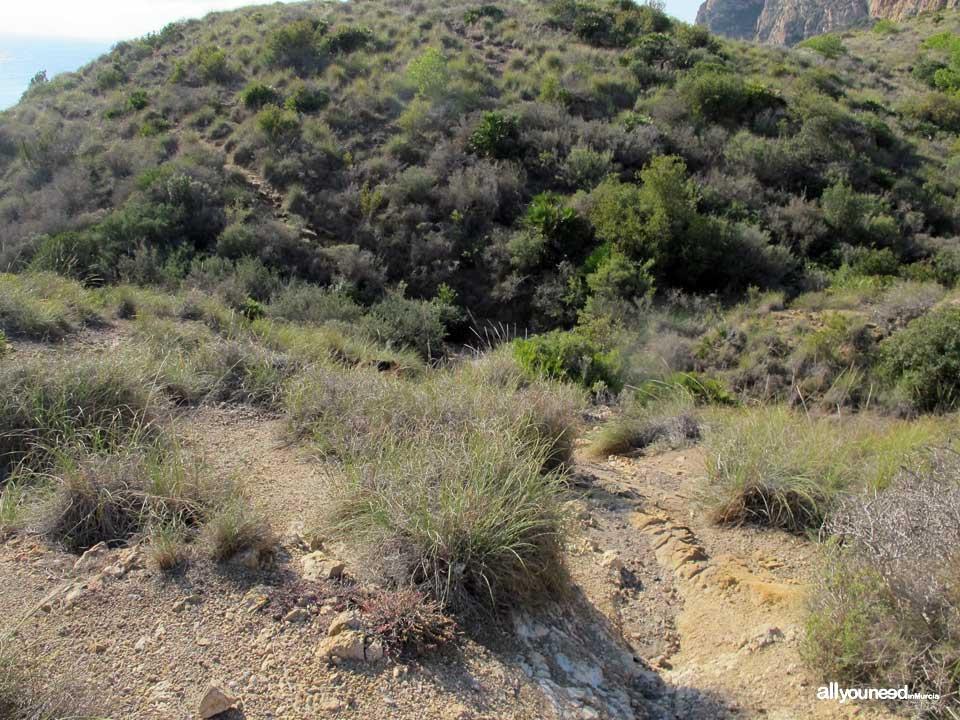 Caballo Cove