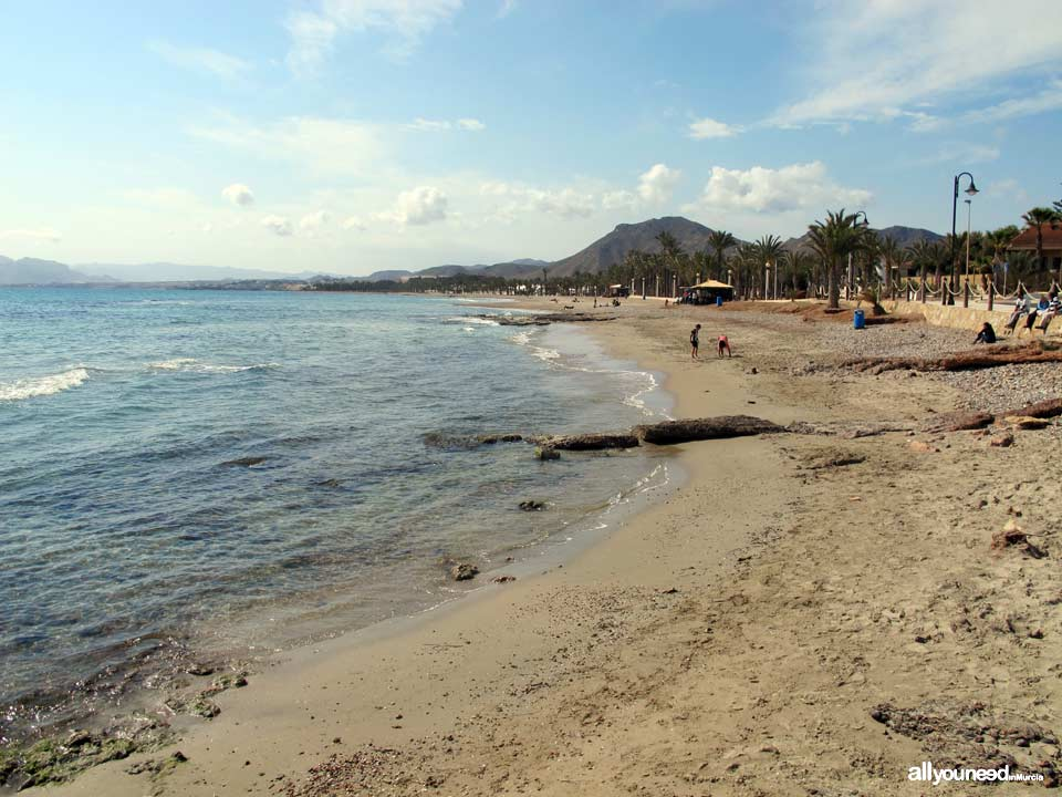Playa de la Chapineta
